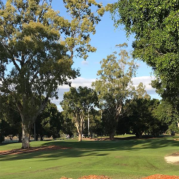 Golfing Green Standard